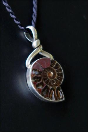 Fossil ammonite and sterling silver pendant on black cord ammonite and sterling silver fossil pendant aloadofball Images
