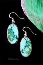 Large Turquoise earrngs