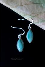 Elliptical Turquoise earrings