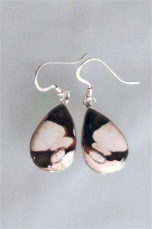 Zebra Stone Earrings